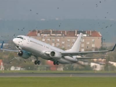 Chi 1000 tỷ đồng đuổi chim ở sân bay: Dân chịu thiệt nhưng chưa chắc được hưởng lợi